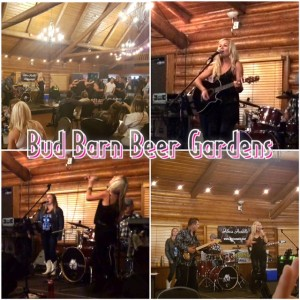 Bud Barn Collage